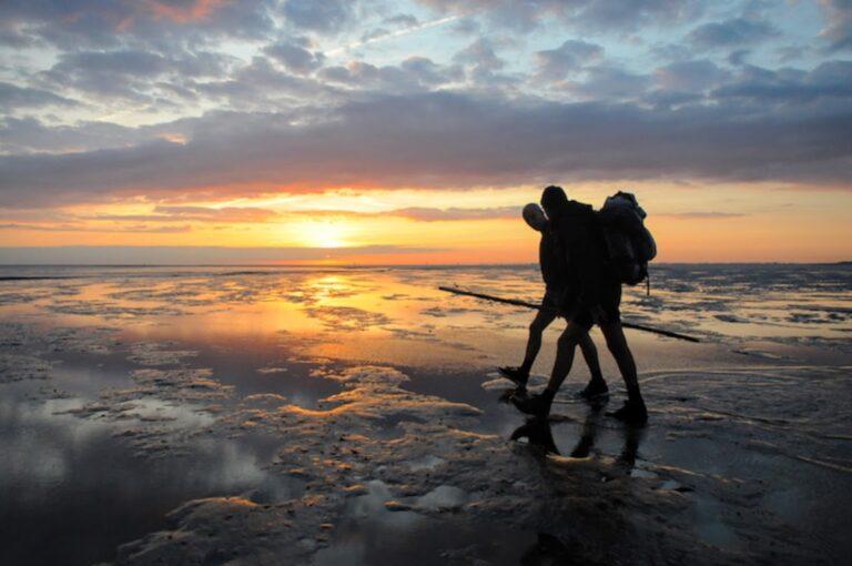 Mudwalk guides in the Dutch Waddenzee