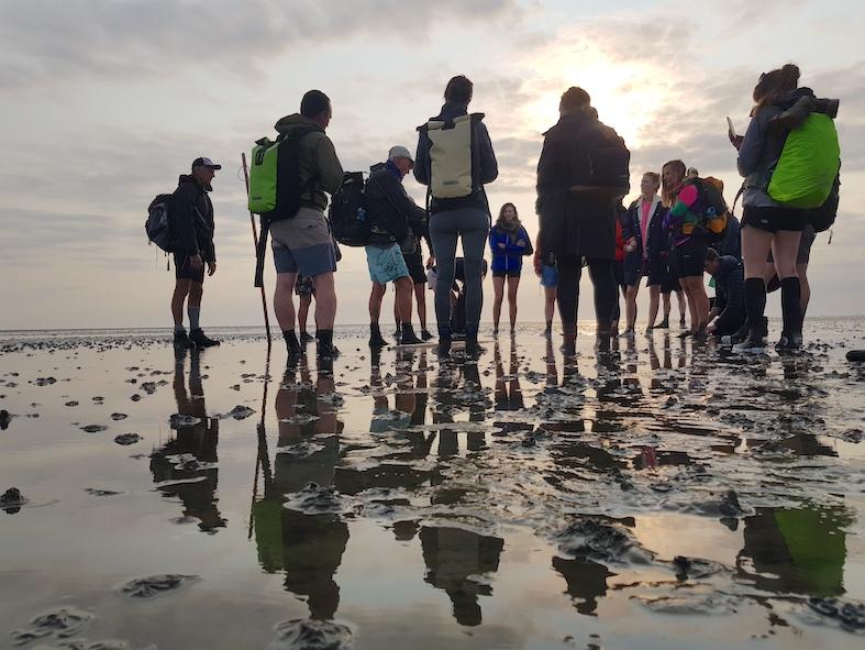 People on mudwalk trip in Dutch Wadden Zee